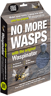 UK wasp population and other questions answered on our FAQ page